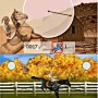Horse jump training in my horse and me nintendo DS game