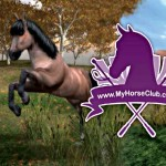 My horse club online game