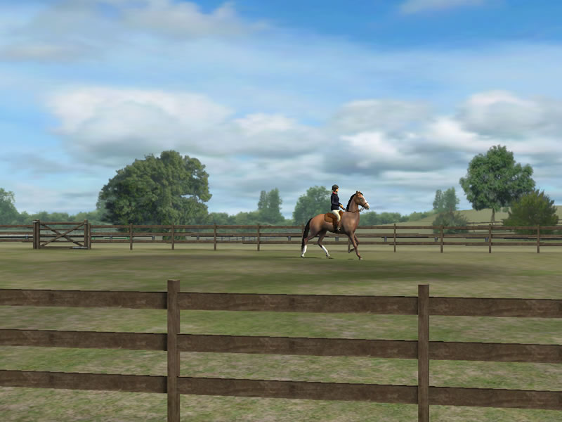 The Good Ride >> My Horse iPhone or iPad horse game - Horse game appHorse Games