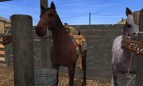 Nancy Drew Secret of Shadow Ranch Horse Game Adventure