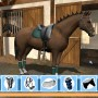 Customizing horse in lets ride riding star game