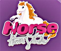 Horse Hair Studio game in flash