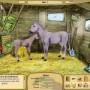 My pony stables 2